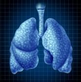 10843758-organo-de-los-pulmones-humanos-como-un-simbolo-de-salud-medica-que-representan-las-vias-respiratoria