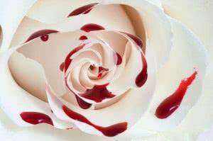 sangre-rose_61-1660