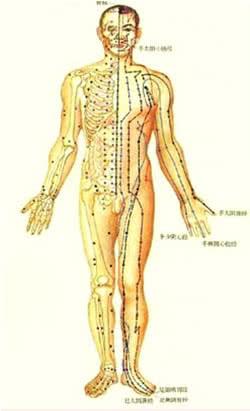 acupunturaatlas