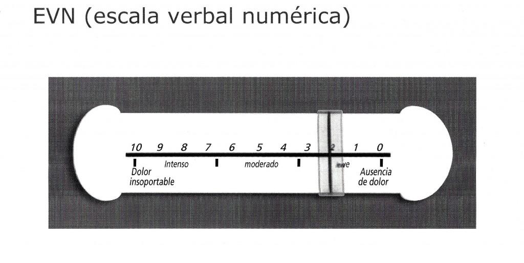 Escala verbal numérica